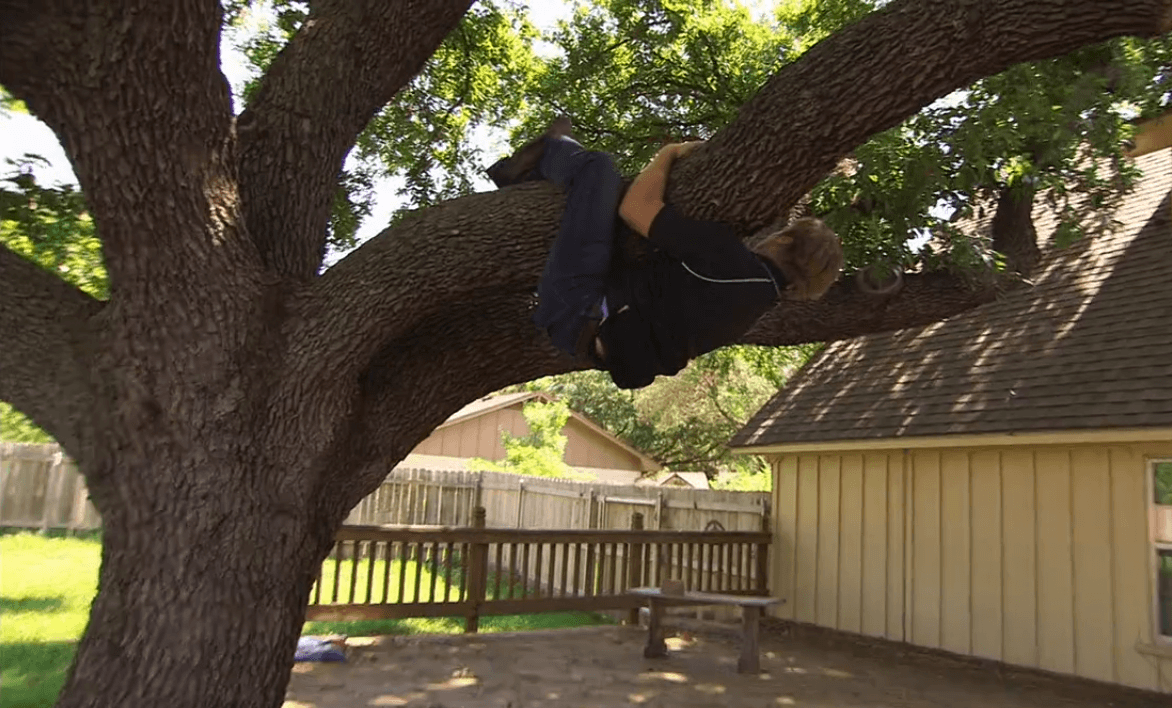 Chip Gaines climbs a tree