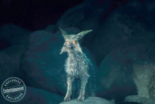 The crystal foxes of Crait