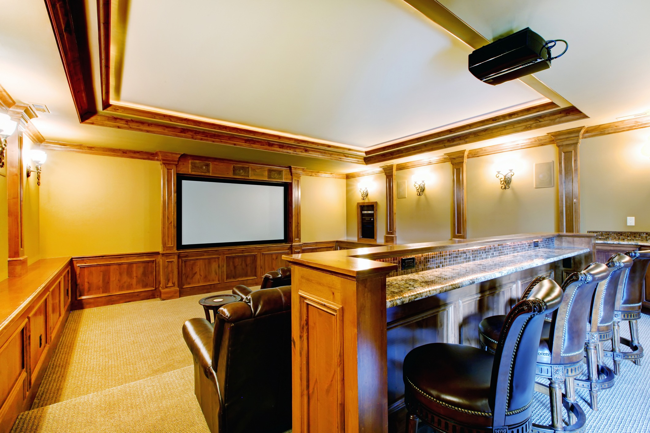 Home Movie Theater with bar