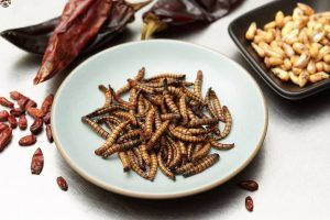 These Insects May Soon Become Dinnertime Staples
