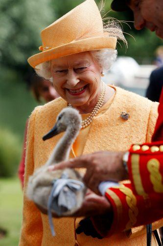 Queen Elizabeth and swan
