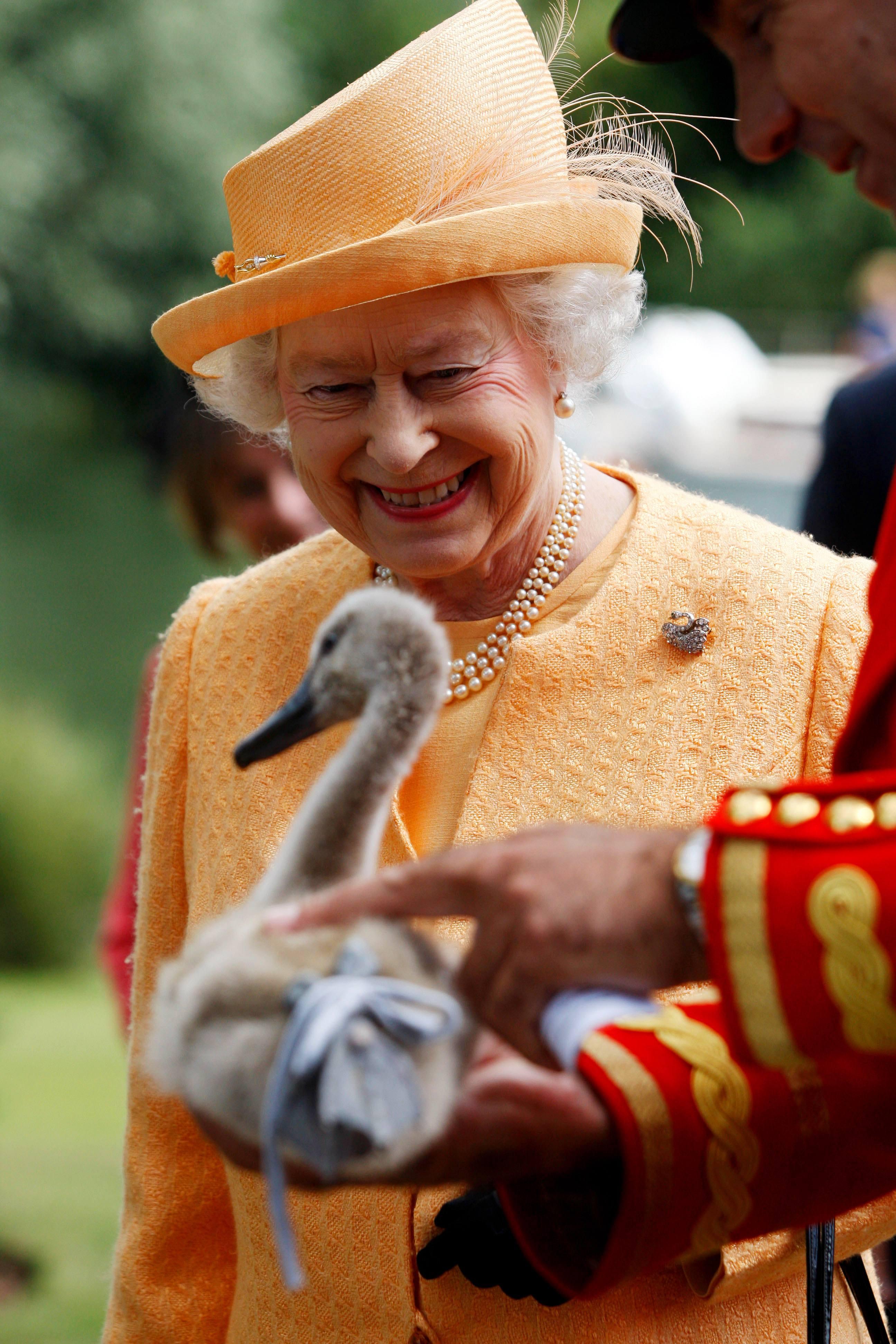 Queen Elizabeth and swan
