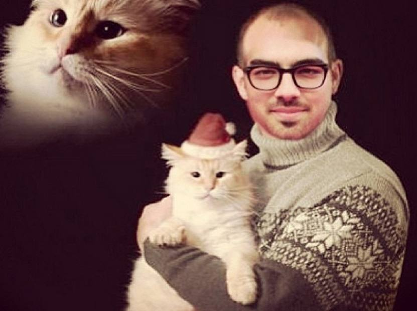 Joe Jonas holds a cat with a Santa hat
