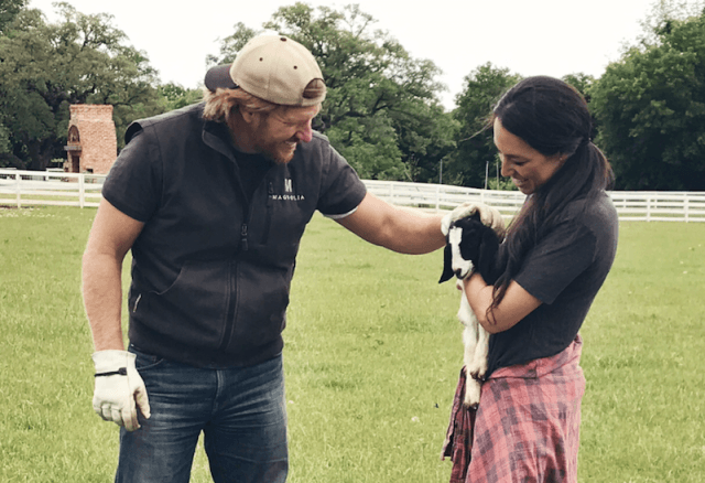 Chip Gaines petting a baby goat that Joanna is holding.