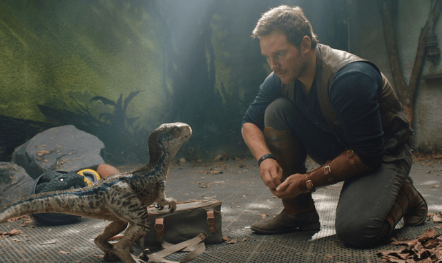 Owen interacts with a small dinosaur.