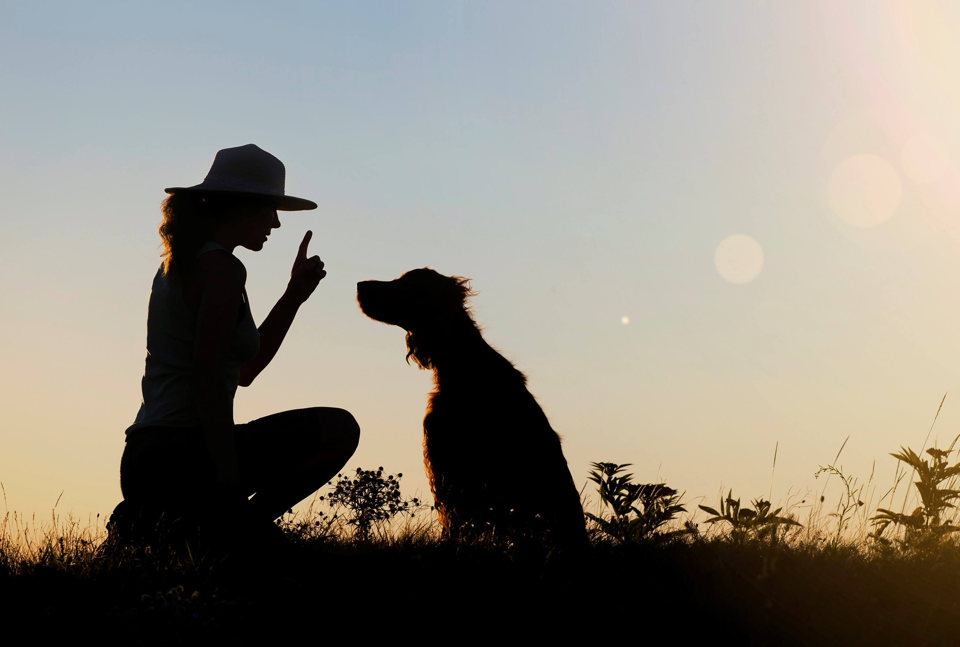 Silhouette of a female as training her dog