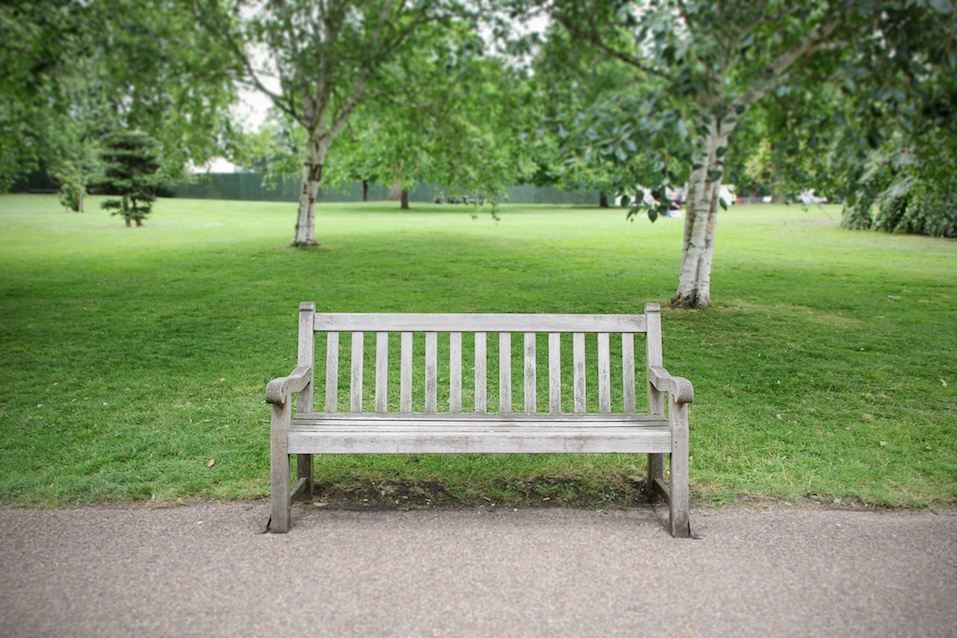 An empty bench in park