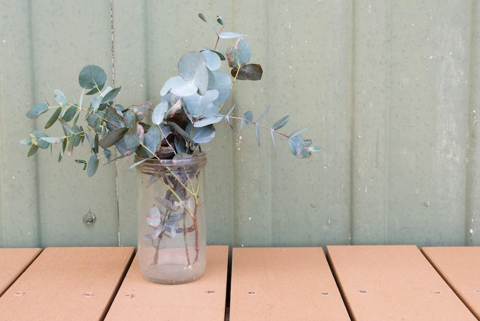 Eucalyptus leaves in glass jar