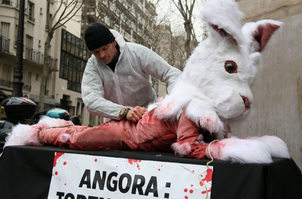 """Activists from the animal rights organisation People for the Ethical Treatment of Animals (PETA) display a banner which translates as """"Angora: Torture for rabbits"""""""