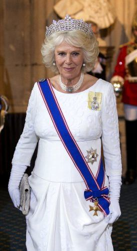 Camilla in royal garb