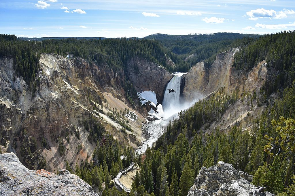yellowstone national park waterfall with mountains and an eagle