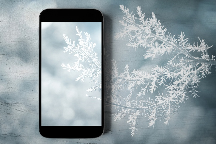 illustration of smarthphone with snowy tree branch