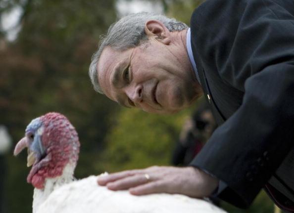 george w. bush pets a turkey