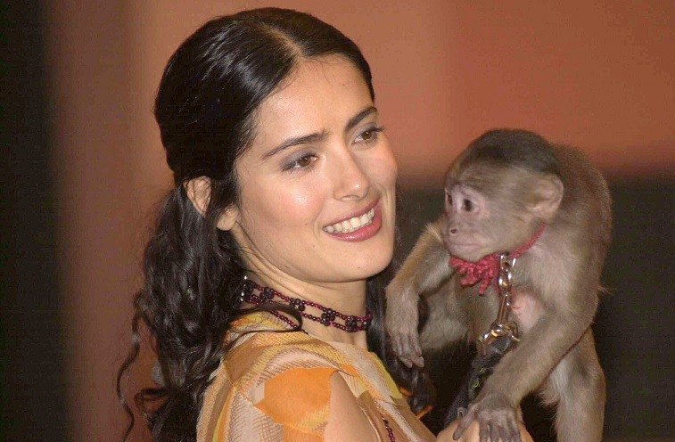 Mexican actress Salma Hayek holds 'Tyson' the spider monkey at a press conference about the movie 'Frida Kahlo' April 5, 2001 in Mexico City.