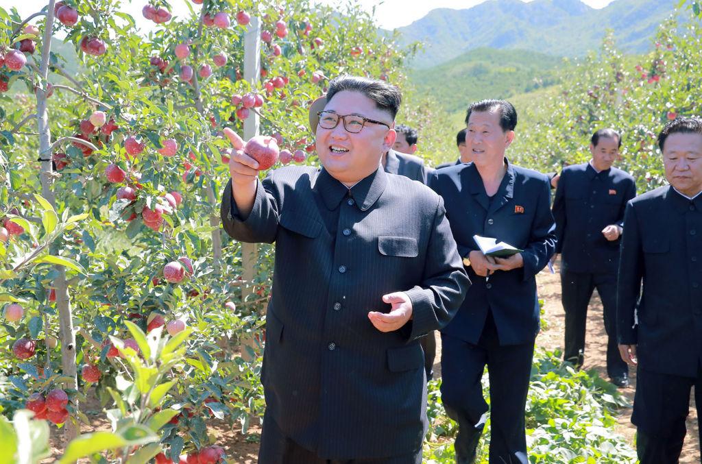 North Korean leader Kim Jong Un visiting a fruit farm