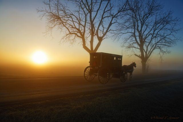 A horse drawn carriage riding in the sunset.