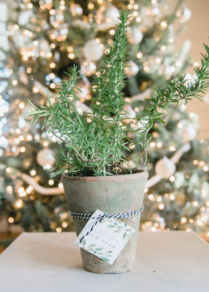 Joanna Gaines Christmas Decor Hostess gift