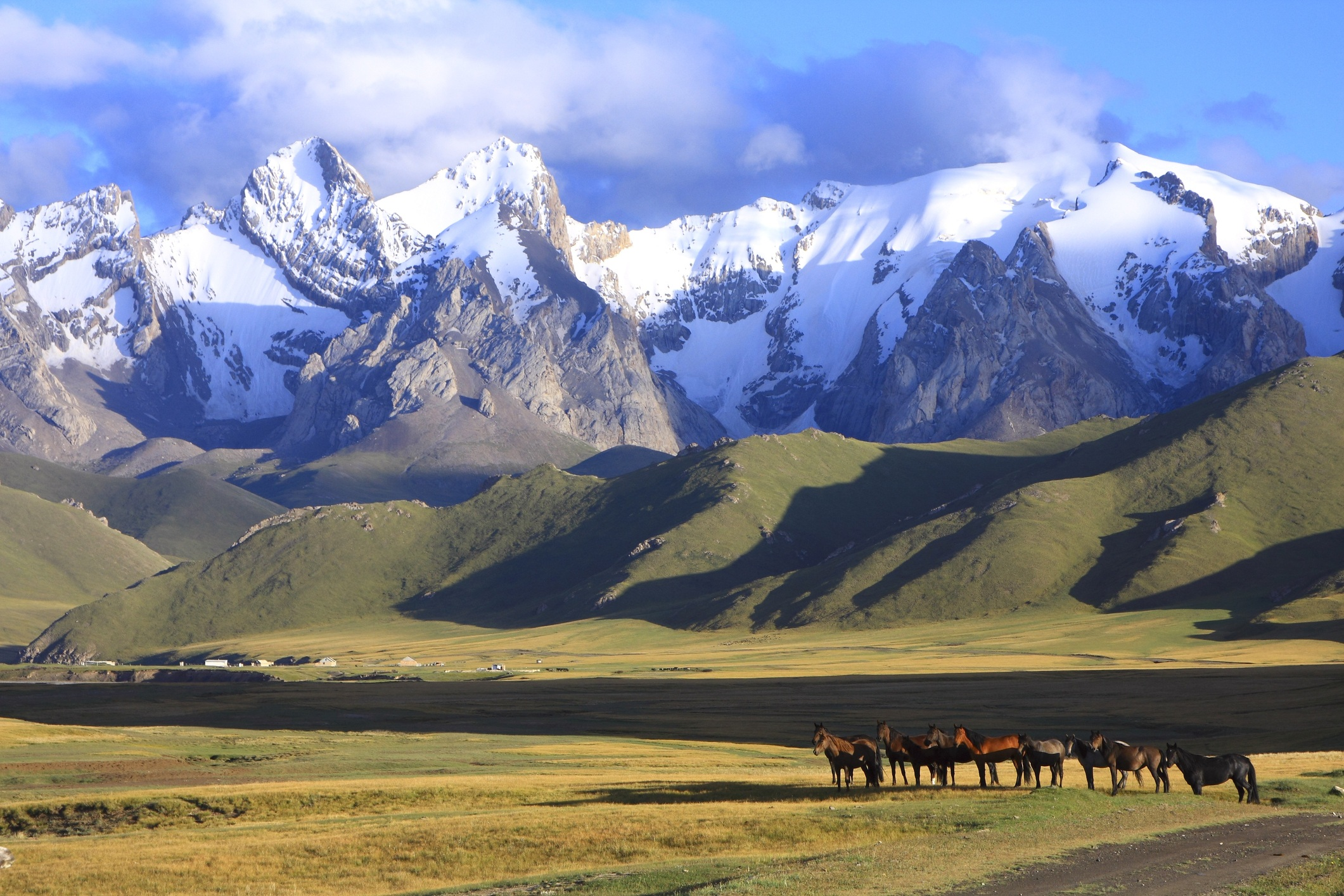 horse and mountain landscape of Kyrgyzstan