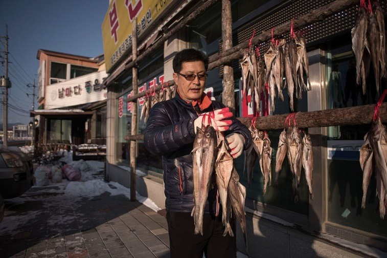 North Korean Merchant
