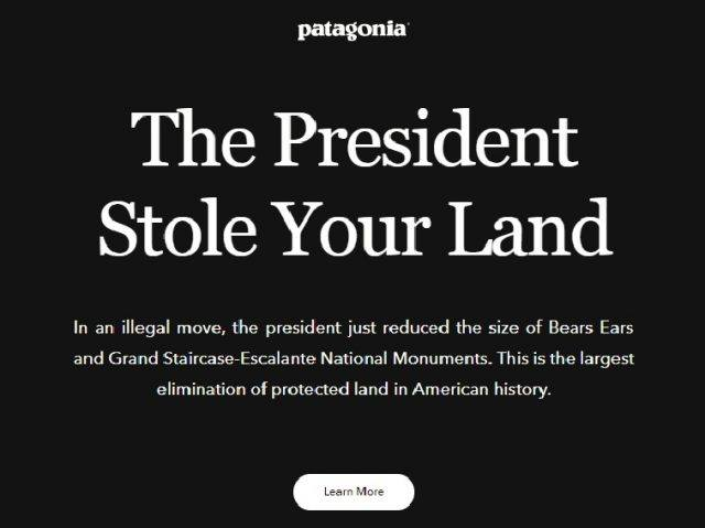 A screen shot of patagonia's website
