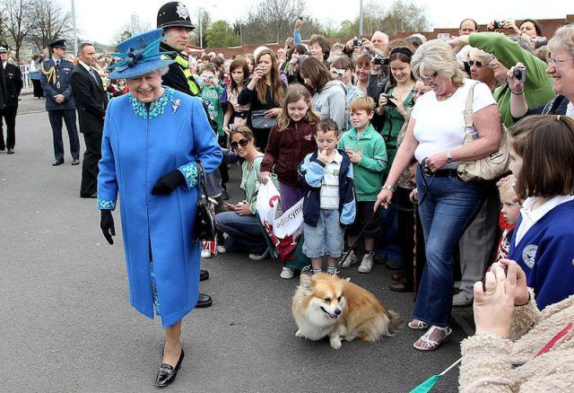 Queen Elizabeth smiling as she walks in front of a corgi.