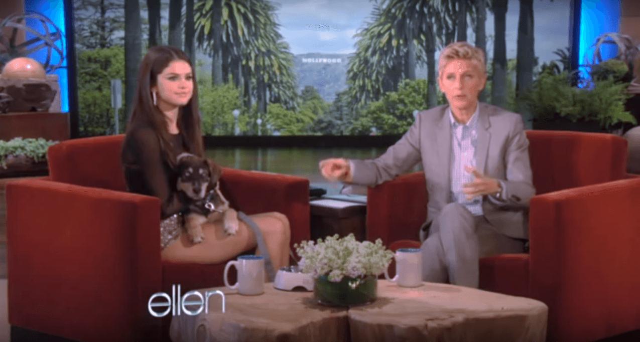 Selena Gomez on The Ellen Show with her dog Baylor