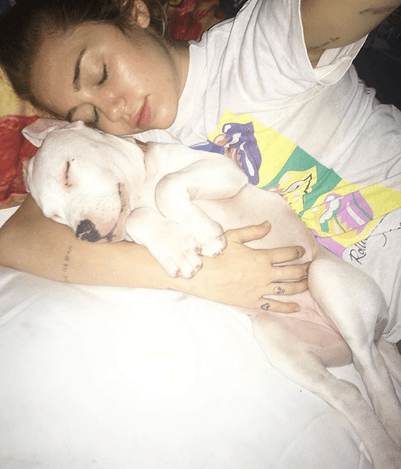 Miley Cyrus and Milky as a puppy
