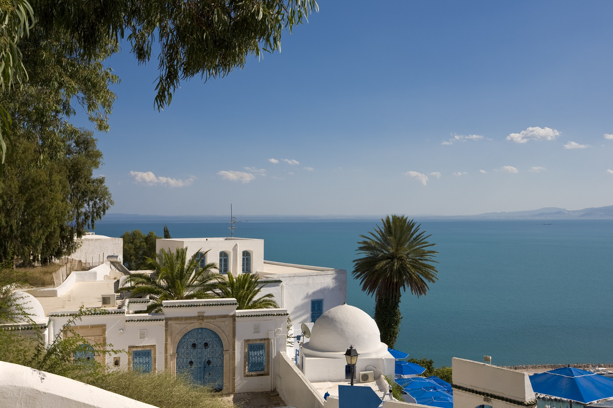 Tunisia white house with blue door and palm trees overlooking the ocean