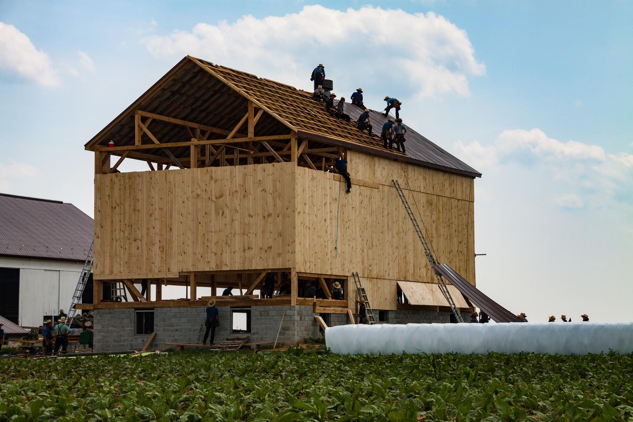 Amish Barn Raising