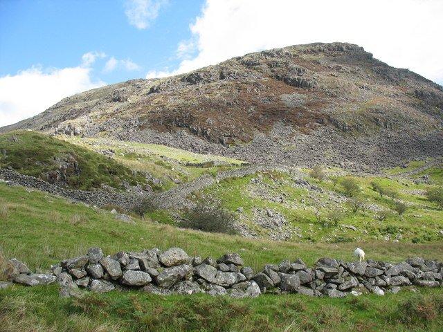 rock wall in field