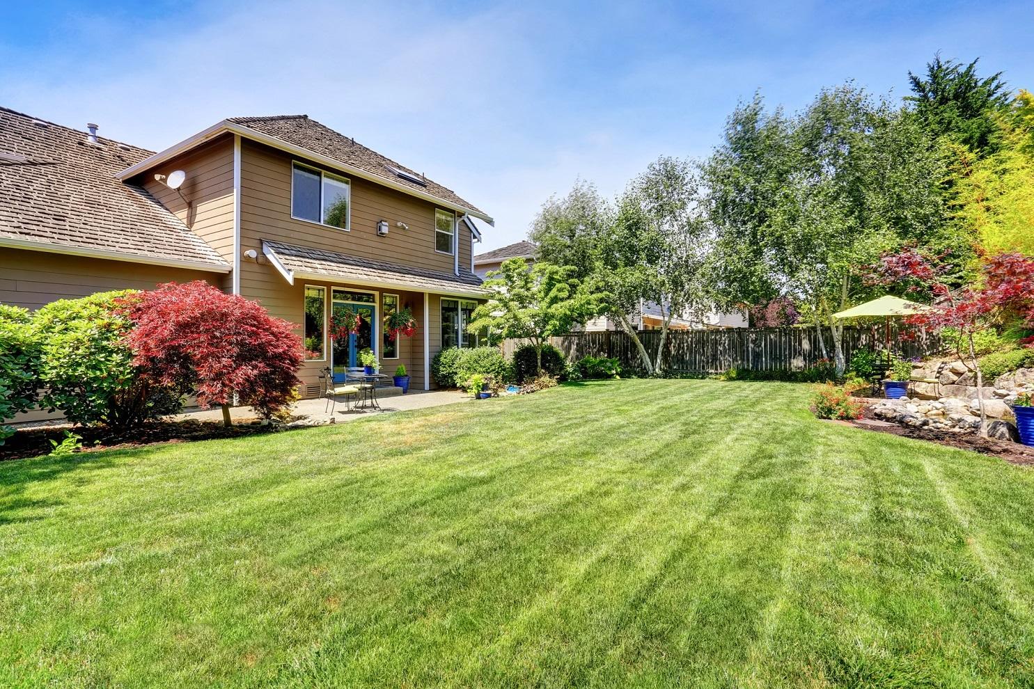 15 Things I Wish I Knew Before I Bought My House
