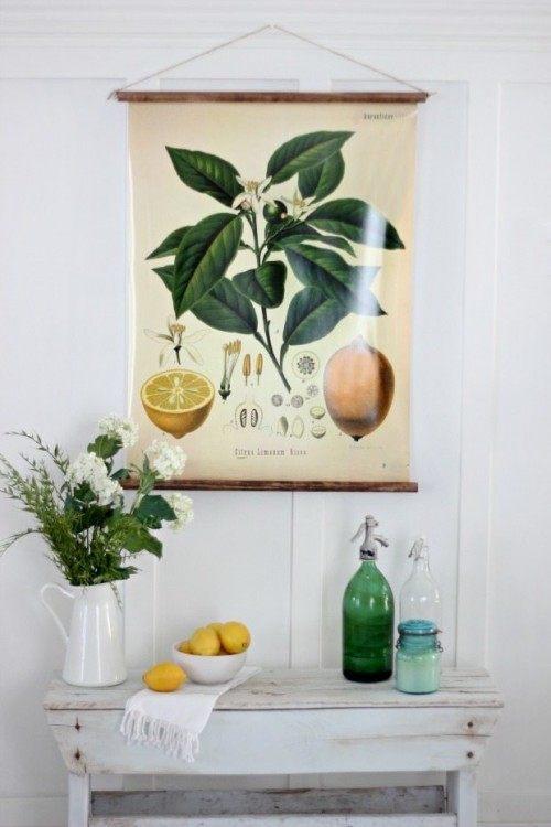 Magnolia Market Botanical Print