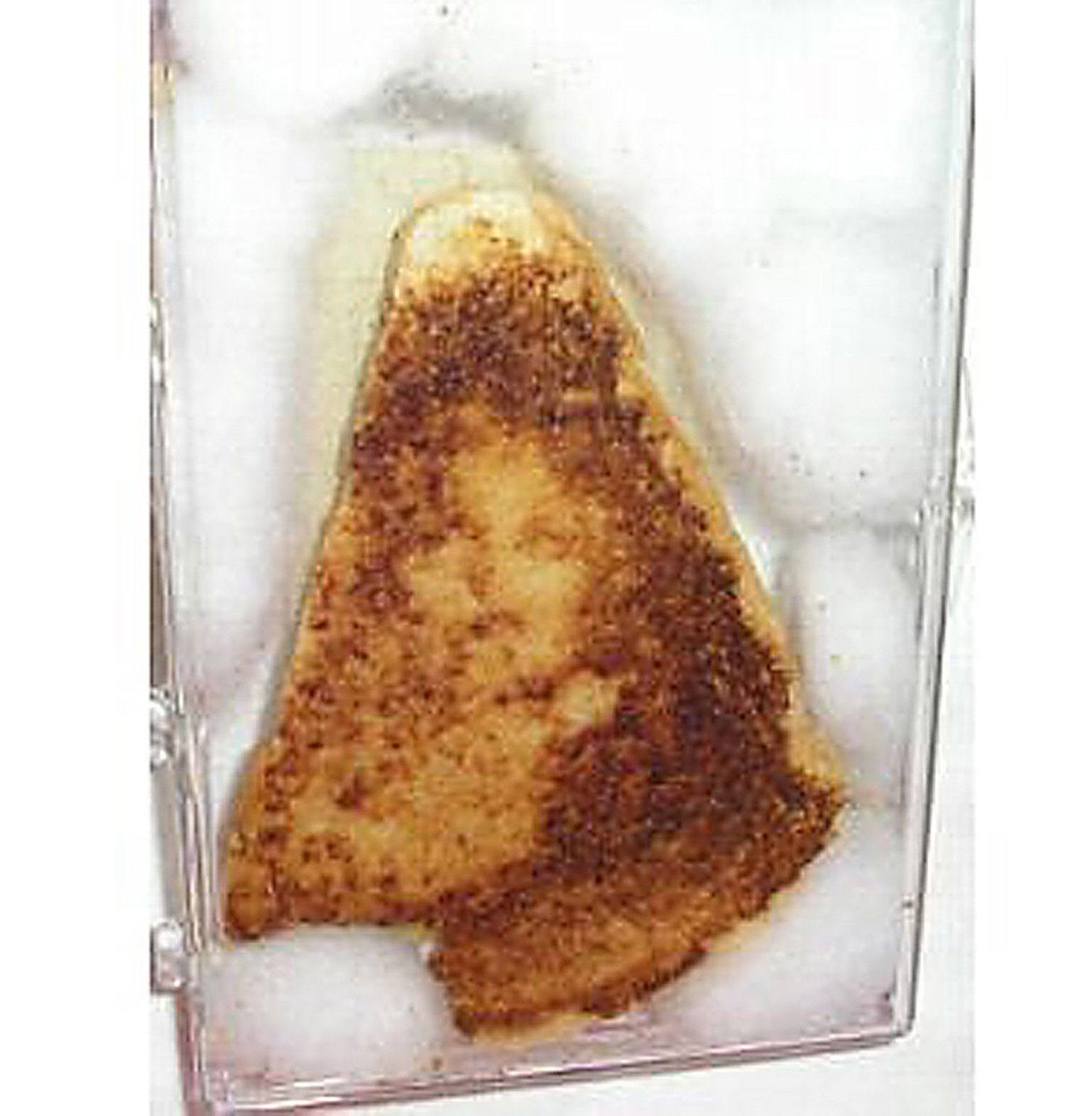 Virgin Mary Grilled Cheese Sandwich