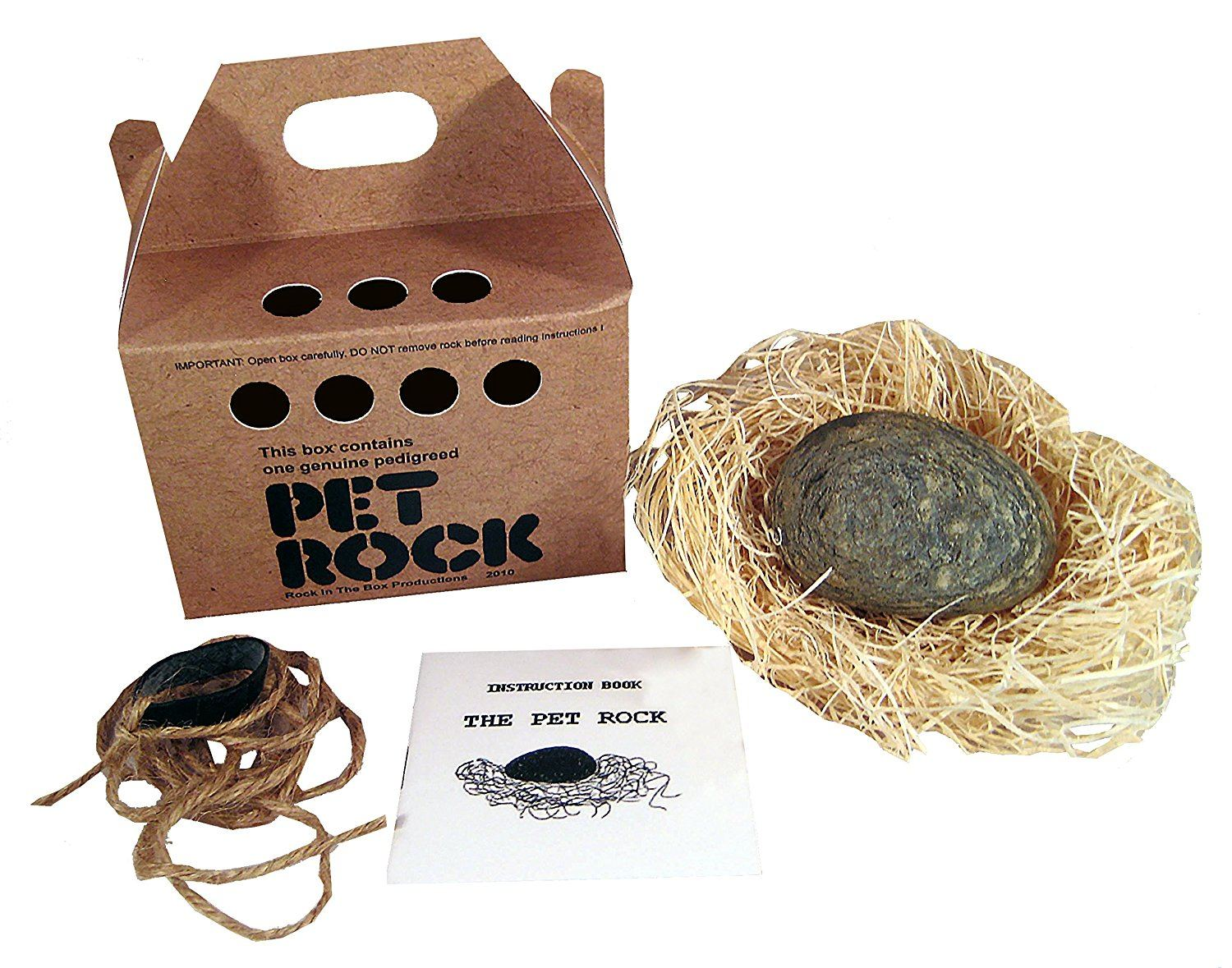 Pet rock kit with box and leash