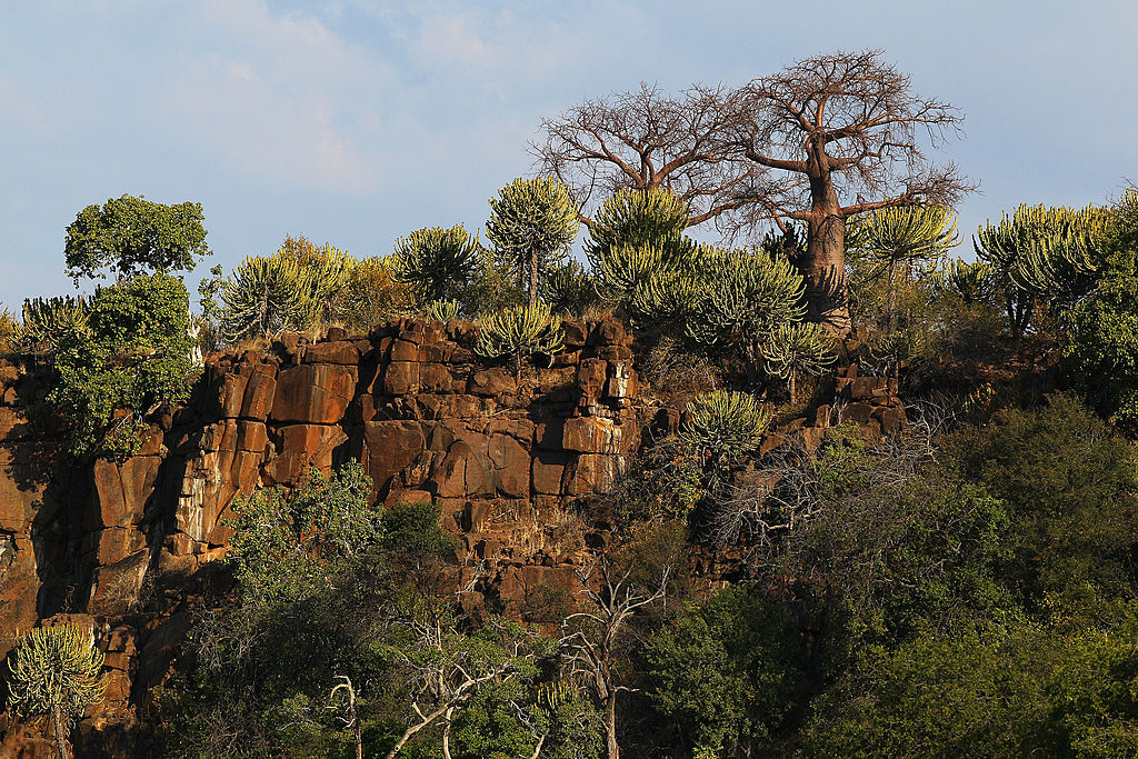 Cliff top in Mapungubwe, Botswana
