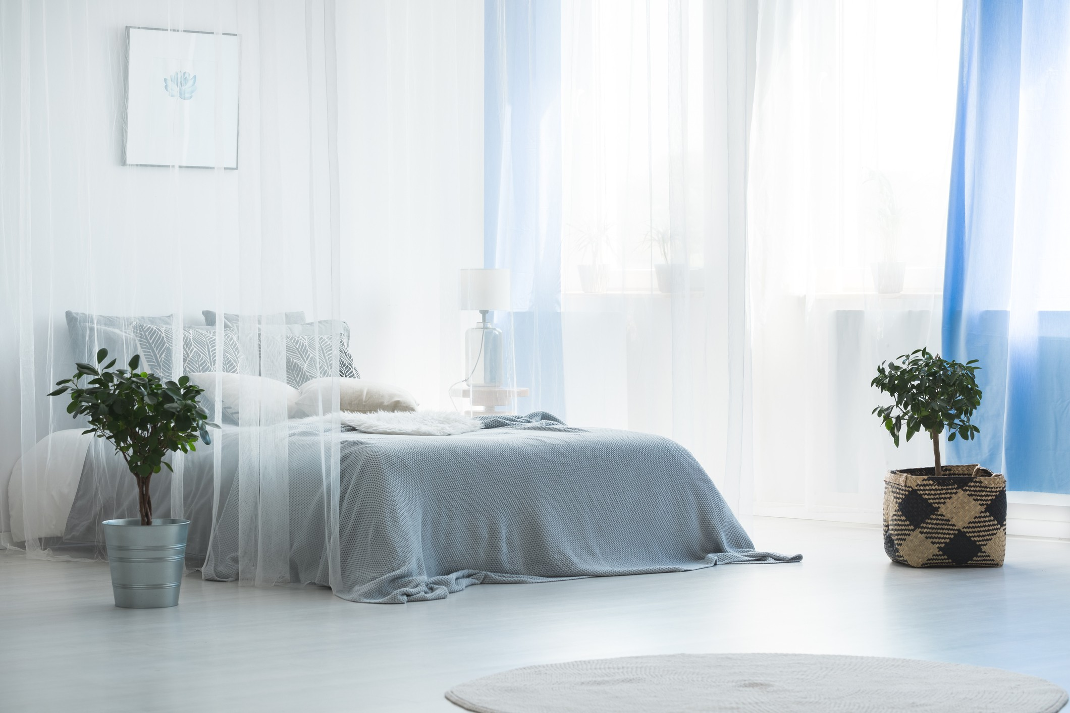 Canoby bed in calming blue bedroom