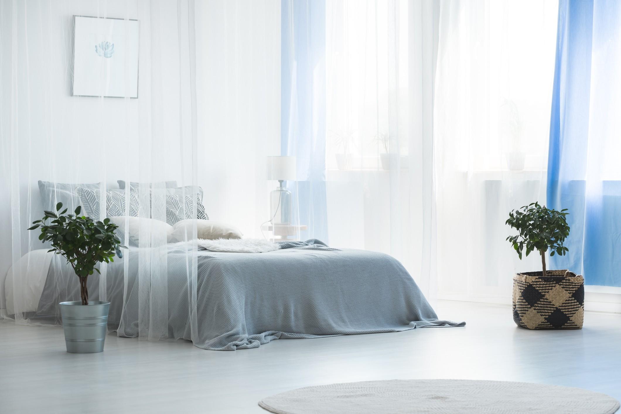 Canoby bed in calming blue bedroom
