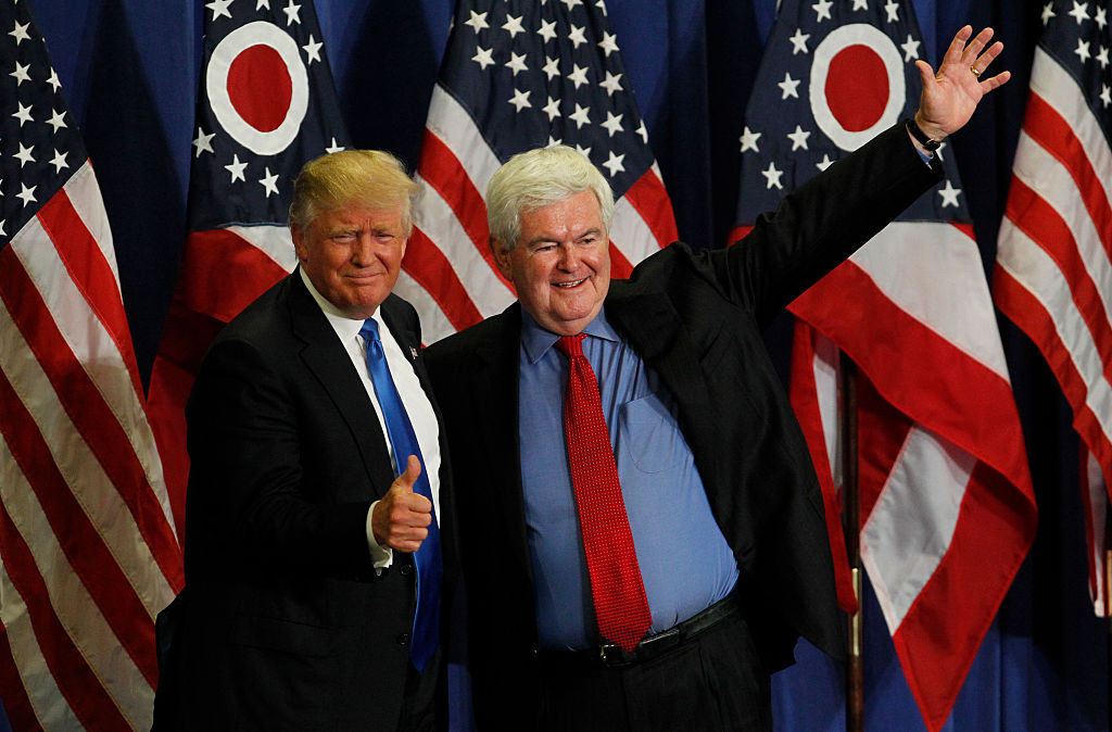 newt gingrich and donald trump at a rally in front of american flags