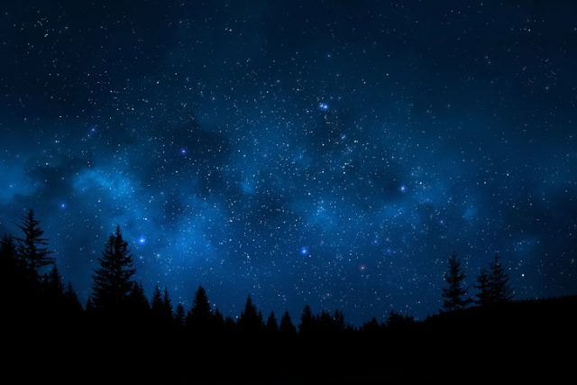 Landscape showing trees against magical and starry night sky full of stars
