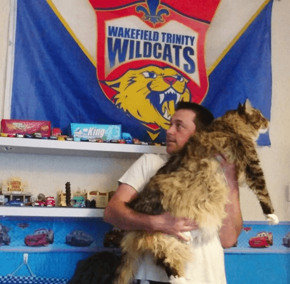 Ludo-Giant-Cat-With-Man
