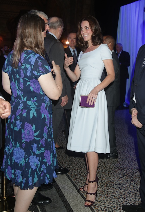 Kate Middleton chatting with guests.