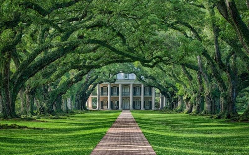 Oak Alley plantation