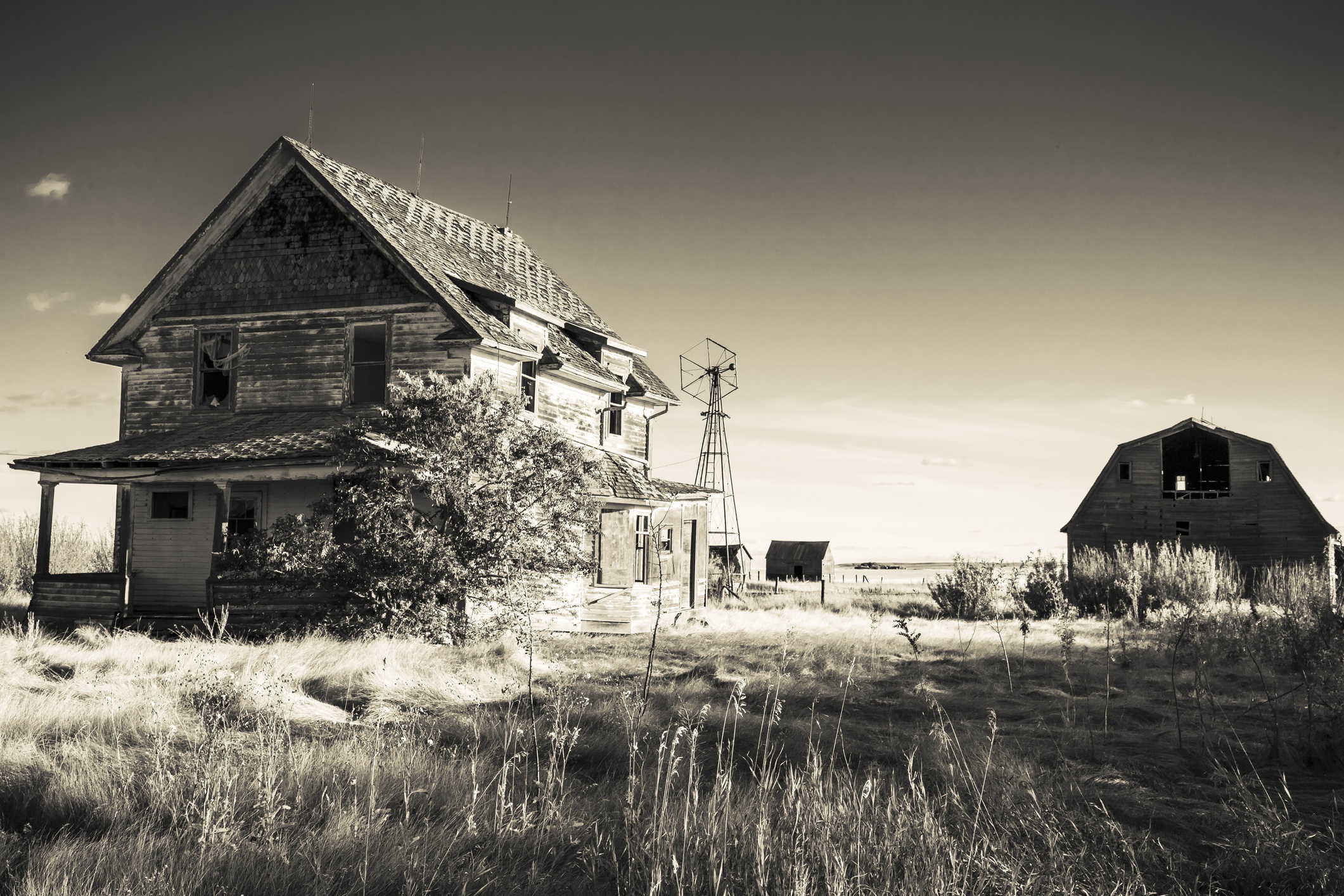 Old creepy farm