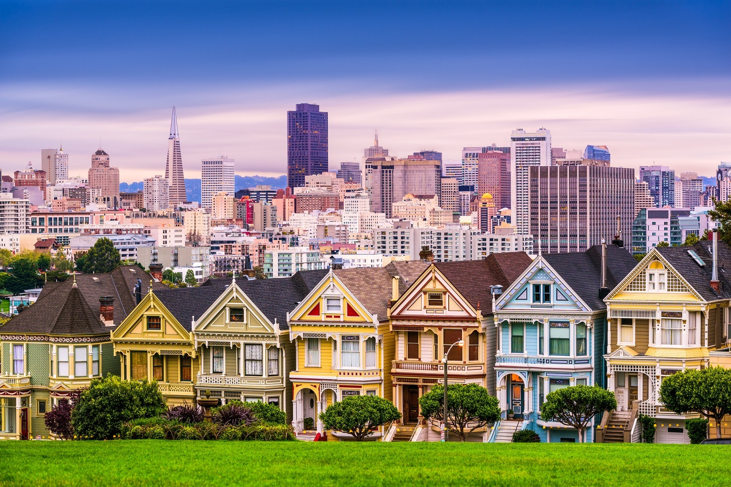 San Francisco Skyline with painted ladies