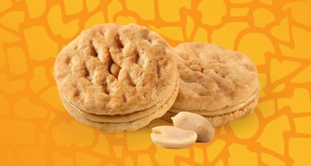 Peanut butter cookies on an orange background.