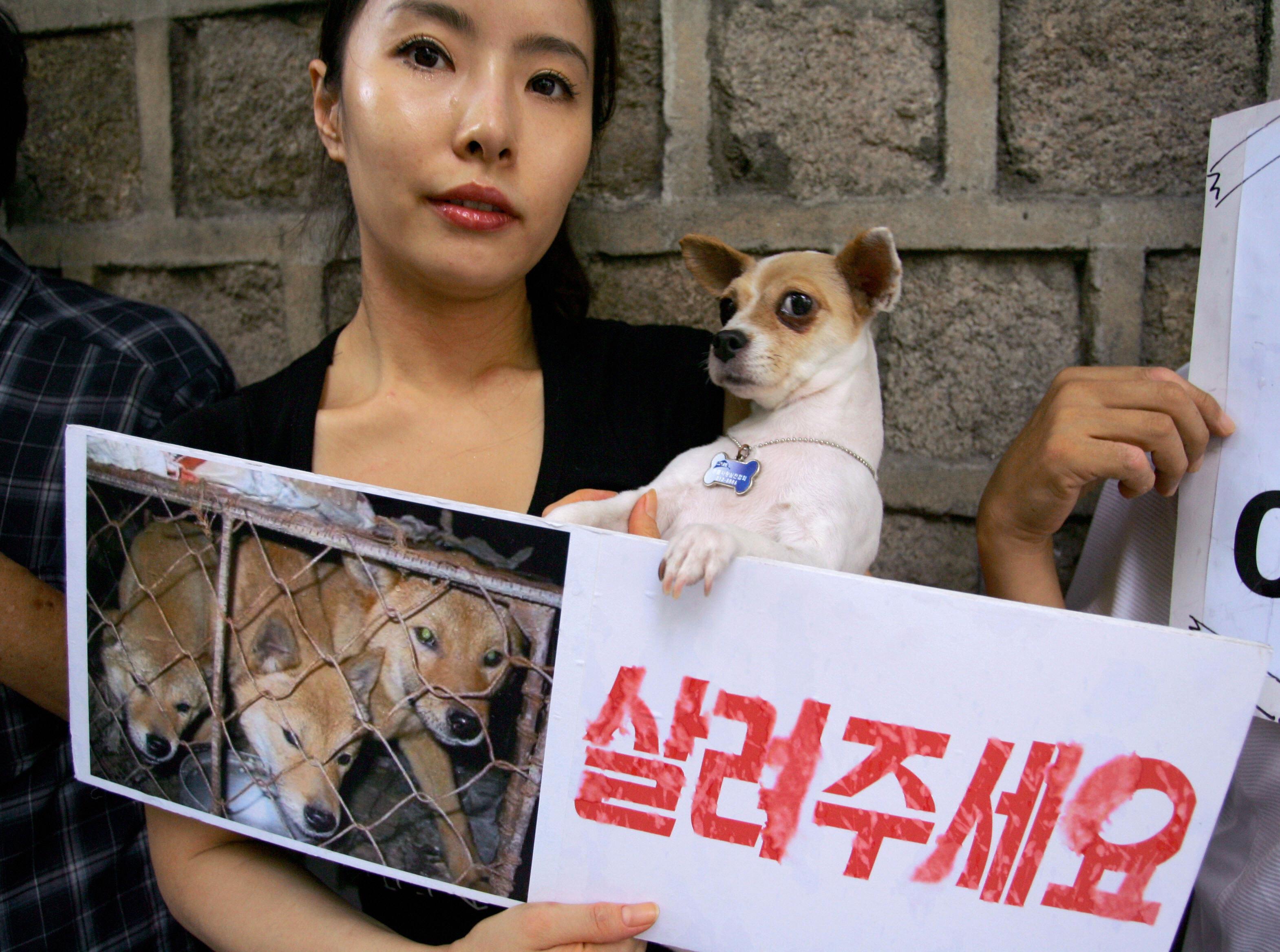 A South Korean animal protestor shows a