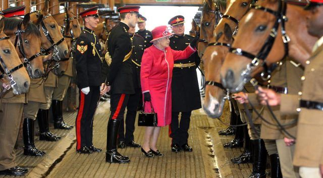 Queen Elizabeth petting horses.