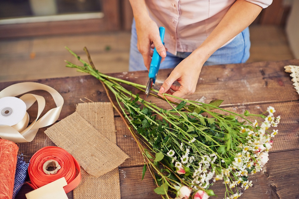 Florist cutting flower stems