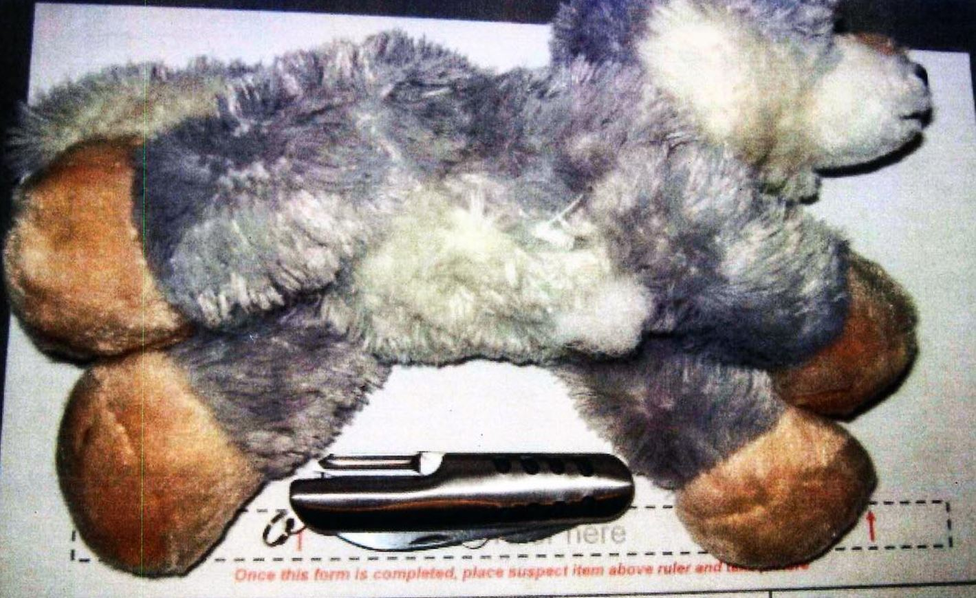 a knife sewn inside this stuffed animal at Tampa International Airport.