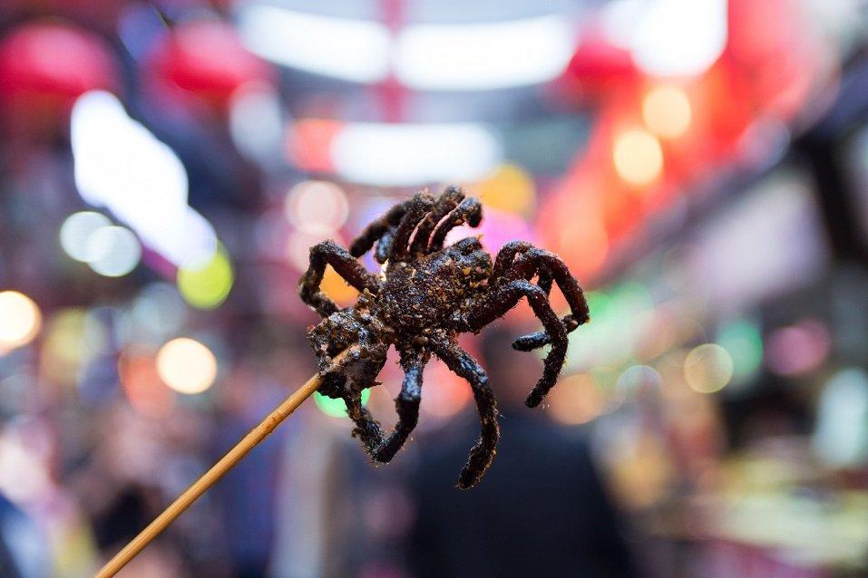 Tarantula Fried